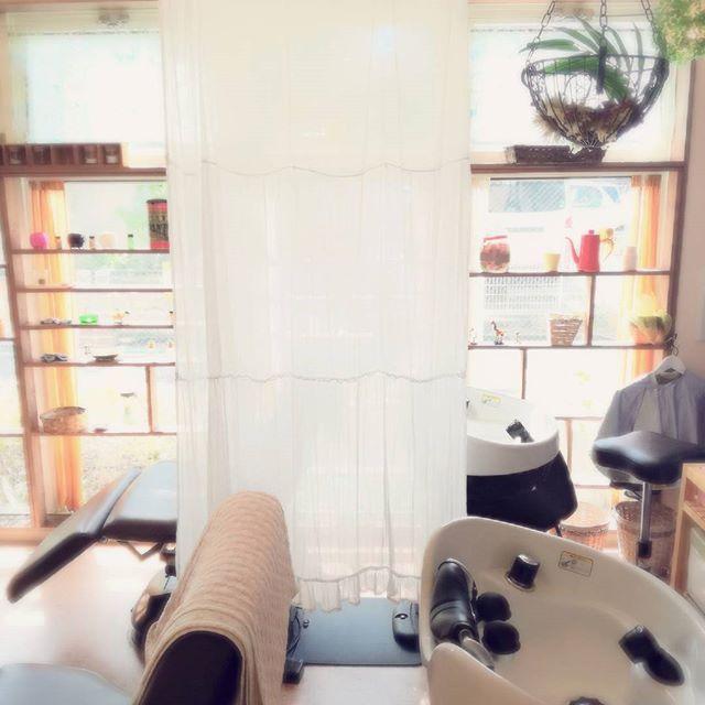 いい天気️シャンプー台で寝たい。。#藤沢#美容室#シャンプー#いい天気